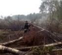 Лесные пожары в Тверской области тушили 40 тульских спасателей