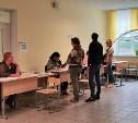 К 12 часам в Тульской области проголосовали более 10% избирателей