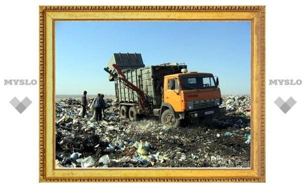 В Туле создадут отдельное предприятие по сбору и вывозу мусора