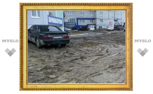 В Туле вместо газонов - непроходимая грязь