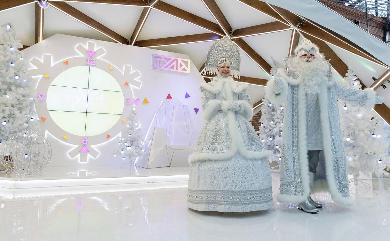 Новый год по расписанию: в Тульской области не будут вводить жёсткие ограничения