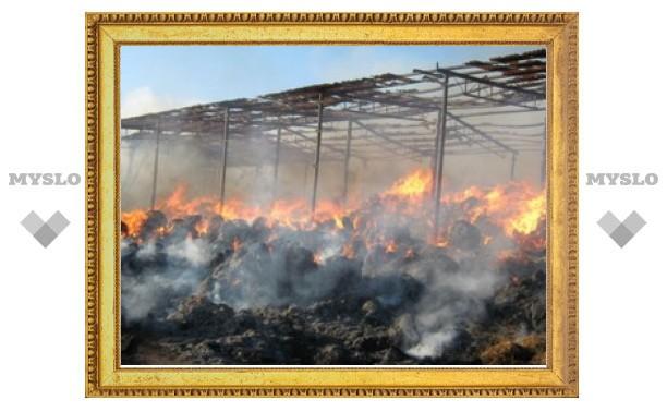В Тульской области сгорело 30 тонн сена