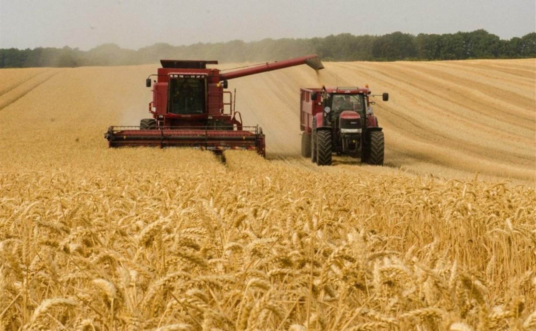 В Тульской области началась уборка урожая