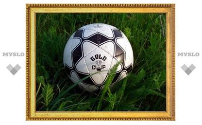 В Туле футболист умер после забитого гола