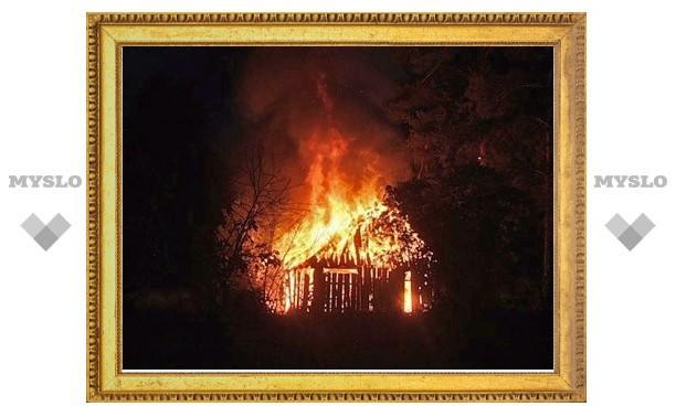 Под Тулой сгорели отец и трое детей