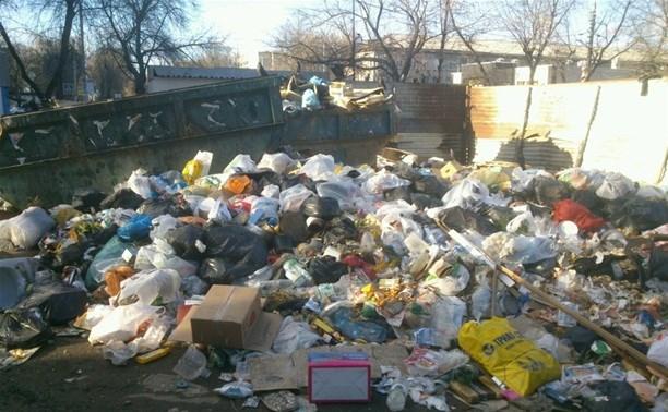 В России планируют ввести «налог на мусор»
