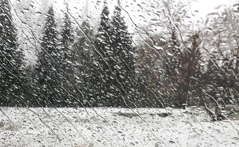 Погода в Туле 29 января: сыро, ветрено и низкое давление