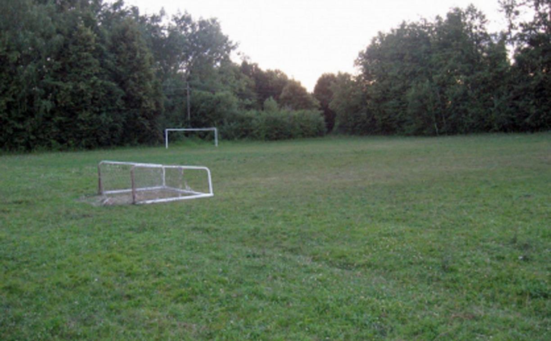 В Тульской области директора центра образования оштрафовали за упавшие на ребенка футбольные ворота