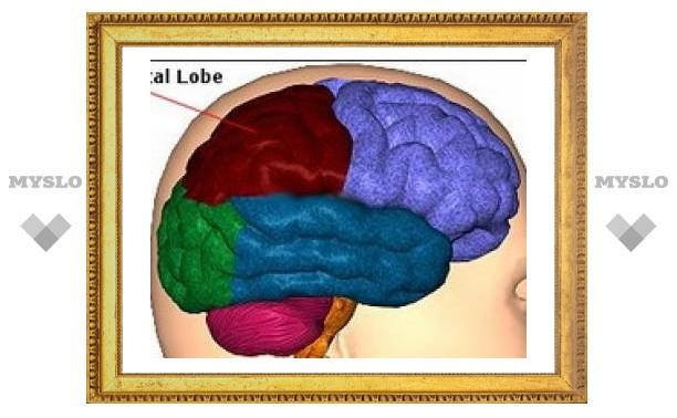 Американские ученые нашли часть мозга, отвечающую за одухотворенность.