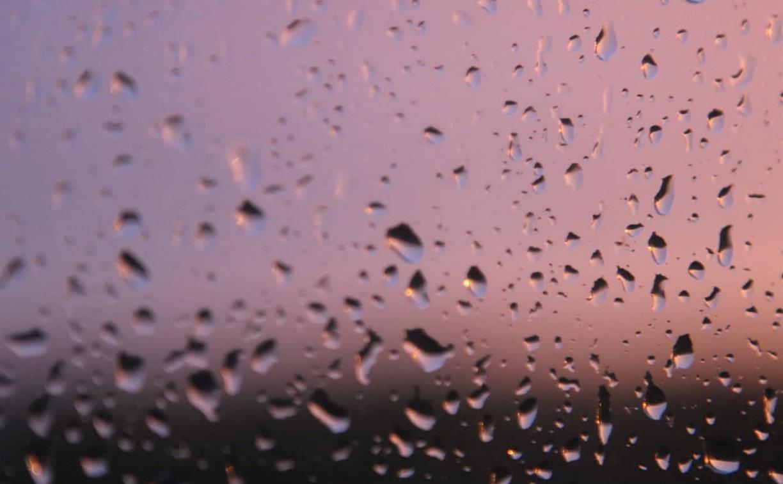 В Туле ожидается кратковременный дождь
