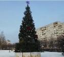 В Зареченском округе установили елки