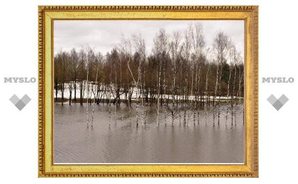 Тульская река Воронка поднялась на три сантиметра