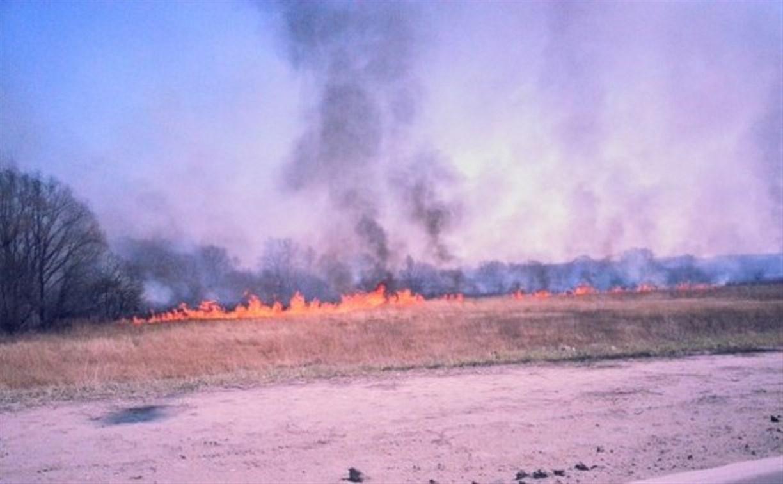 На Восточном обводе горит сухая трава