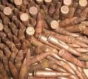 Житель Суворова нашёл на огороде оружие и боеприпасы времён войны