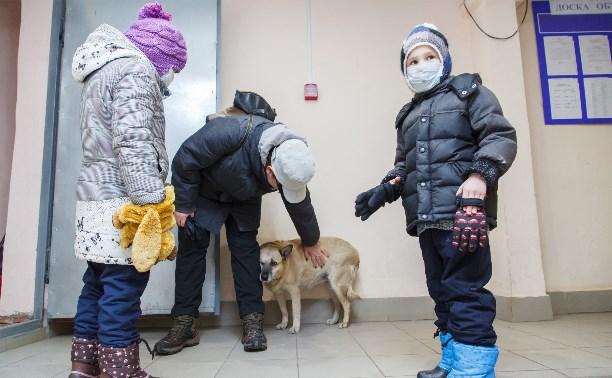 Собака Люся расплачивается за незаконно установленные батареи