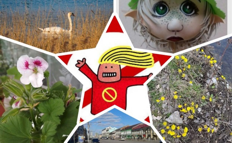 Цветы, чистые лайны и гречка: туляки делятся антипаническими новостями