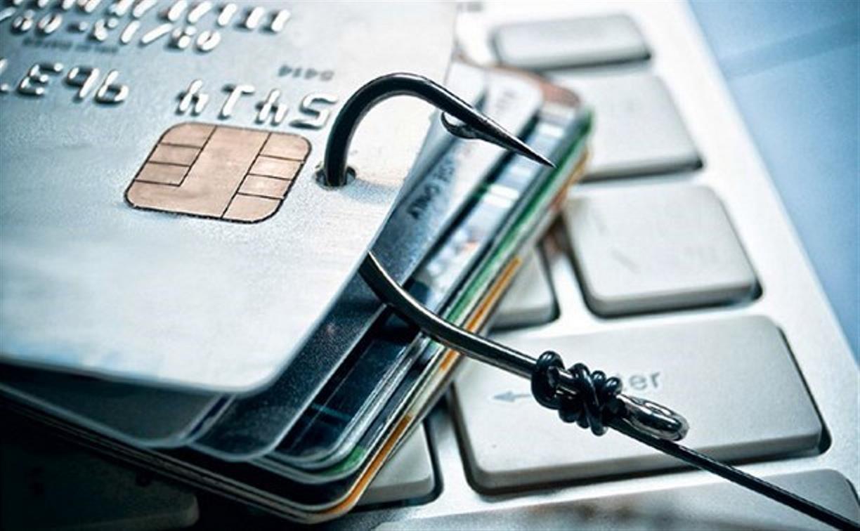 Туляки за сутки отдали мошенникам почти 1 млн рублей