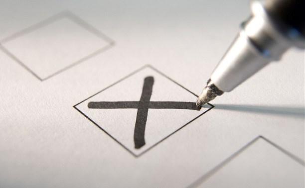 Где будут голосовать туляки: Авилов назначил голосование по общегородским вопросам
