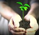 На форуме «Сообщество» в Туле обсудят влияние экологии на здоровье людей