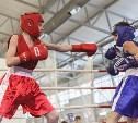В Туле стартовало первенство области по боксу