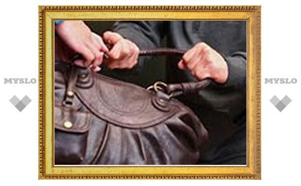 В Щекине полиция поймала уличного грабителя