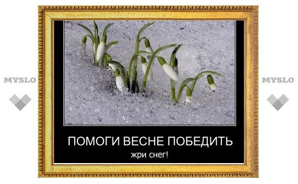 Онищенко: «Не стоит есть снег, от него выпадают зубы»