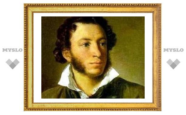 Тулякам покажут Пушкина в картинках