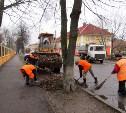В Туле проверили санитарное состояние улиц