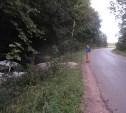 В аварии в Туле пострадала 19-летняя девушка