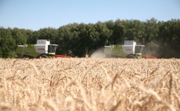 В Тульской области уровень зарплаты в сельском хозяйстве вырос на 14,66%