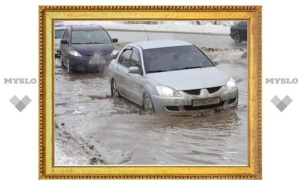 Администрация Заречья и центра Тулы недовольна уборкой улиц