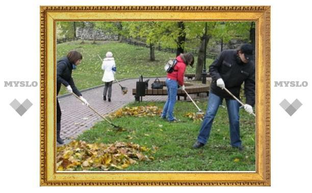 В Туле плохо убирают листву