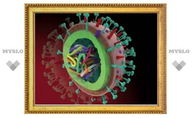 В США успешно испытали универсальную вакцину от гриппа