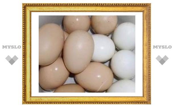 Страстная любовь к яйцам грозит преждевременной смертью