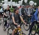 Сотни туляков приняли участие в большом велопараде: фоторепортаж