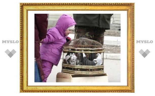 На Благовещение в Туле птиц не берегли