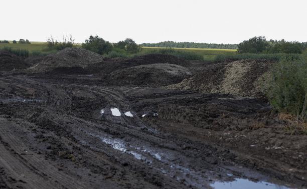 Вонь в Туле: директор птицефабрики «Тульская» на своем поле устроила незаконный склад куриного помета