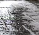 Погода в Туле 15 ноября: мокрый снег, гололедица и умеренный ветер