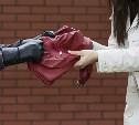 В Туле рецидивист отобрал сумку у девушки и столкнул её с моста