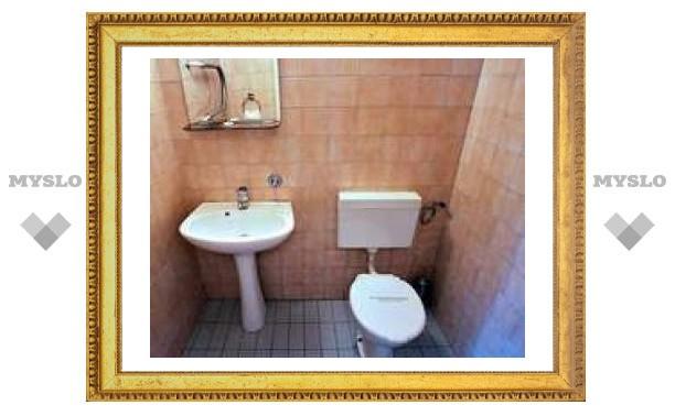 Мэр Тулы обещает построить туалеты в городе