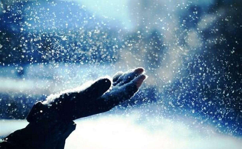 Погода в Туле 1 февраля: небольшое потепление и снег