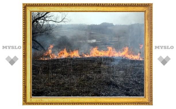 Под Тулой из-за сухой травы сгорела дача