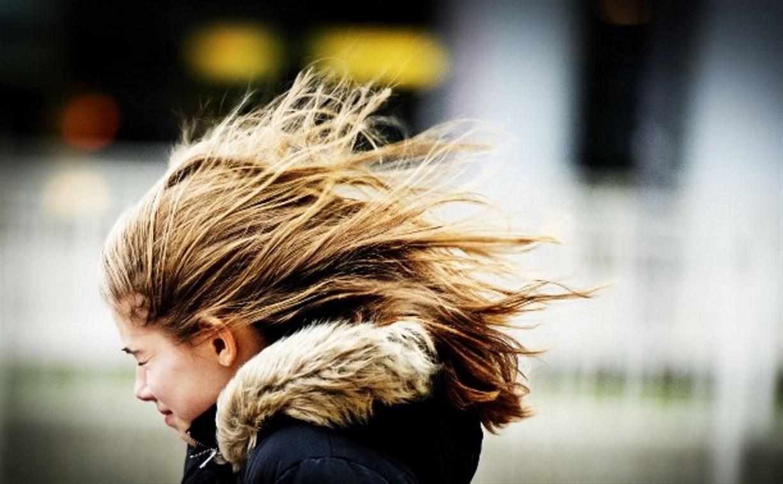 16 ноября в Туле ожидается сильный ветер