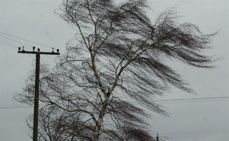 В Туле ветер усилится до 17 м/с