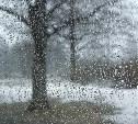 Погода в Туле 29 марта: снег с дождём, ветер и до +6 градусов