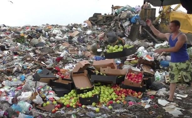 На тульской свалке «похоронили» 600 кг польских яблок: видео