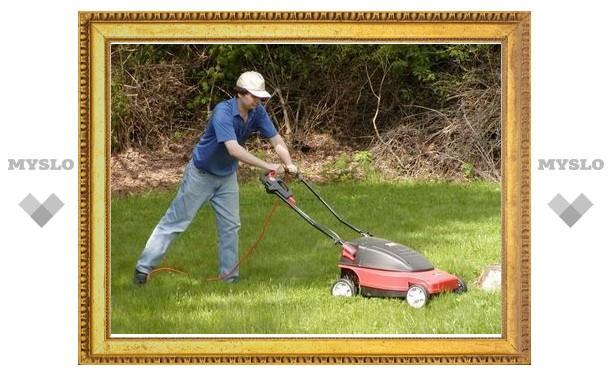 Запах свежескошенной травы обладает психотропным действием