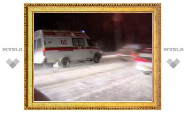 В Тульской области по вине водителя чуть не погибла 7-месячная девочка