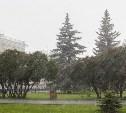 На следующей неделе в Тульской области вновь будет дождливо