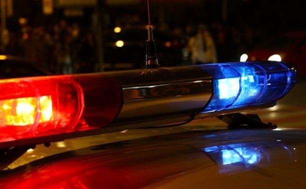 В Щекинском районе полицейский сбил пешехода